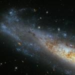 Un ovale tempestato di stelle