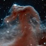 La Nebulosa Testa di Cavallo