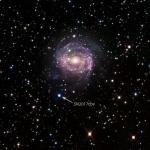 Una Supernova Colta in Flagrante