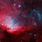 Il Tulipano e Cygnus X-1
