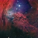 La Nebulosa Pelliccia di Volpe