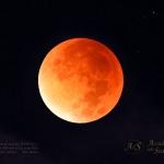 A Roma l'eclissi di Luna e la Grande Opposizione di Marte