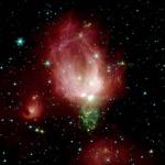 NGC 7129: Un delicato bocciolo di rosa