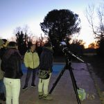Si osserva Mercurio nel cielo del tramonto. Sopra l'albero si nota Venere!