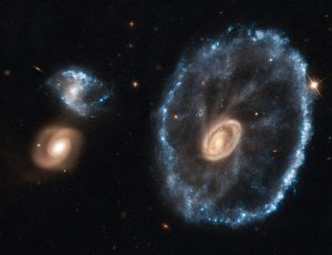 An image of the Cartwheel Galaxy taken with the NASA/ESA Hubble Space Telescope has been reprocessed using the latest techniques to mark the closure of the Space Telescope European Coordination Facility (ST-ECF), based near Munich in Germany, and to celebrate its achievements in supporting Hubble science in Europe over the past 26 years. Astronomer Bob Fosbury, who is stepping down as Head of the ST-ECF, was responsible for much of the early research into the Cartwheel Galaxy along with the late Tim Hawarden — including giving the object its very apposite name — and so this image was selected as a fitting tribute. The object was first spotted on wide-field images from the UK Schmidt telescope and then studied in detail using the Anglo-Australian Telescope.Lying about 500 million light-years away in the constellation of Sculptor, the cartwheel shape of this galaxy is the result of a violent galactic collision. A smaller galaxy has passed right through a large disc galaxy and produced shock waves that swept up gas and dust — much like the ripples produced when a stone is dropped into a lake — and sparked regions of intense star formation (appearing blue). The outermost ring of the galaxy, which is 1.5 times the size of our Milky Way, marks the shock wave's leading edge. This object is one of the most dramatic examples of the small class of ring galaxies.This image was produced after Hubble data was reprocessed using the free open source software FITS Liberator 3, which was developed at the ST-ECF. Careful use of this widely used state-of-the-art tool on the original Hubble observations of the Cartwheel Galaxy has brought out more detail in the image than ever before. Although the ST-ECF is closing, ESA's mission to bring amazing Hubble discoveries to the public will be unaffected, with Hubblecasts, press and photo releases, and Hubble Pictures of the Week continuing to be regularly posted on spacetelescope.org. Links  Space Telescope European Coordination